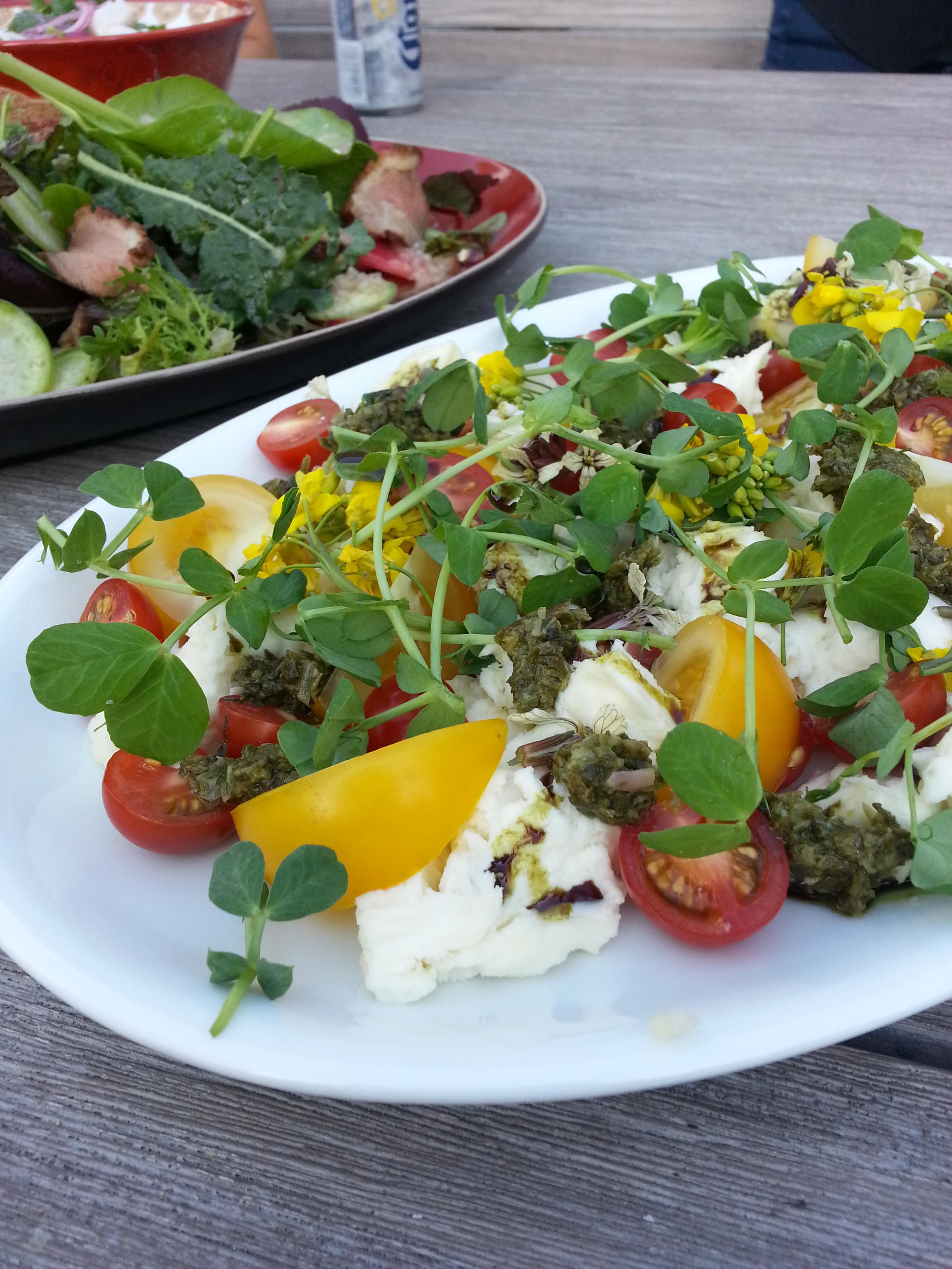 Aya's Kitchen New York Spring Mozzarella & Tomato Salad with Ramp ...